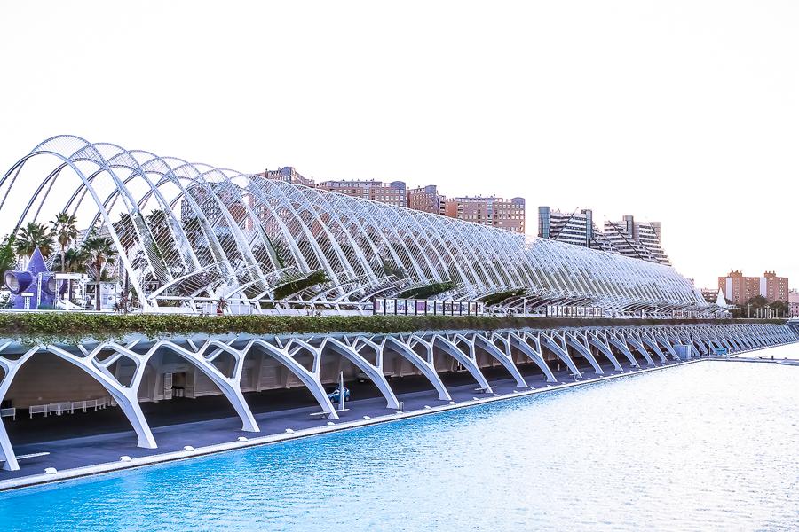 Alquiler de Salas para eventos en Valencia - Terraza Umbracle Eventos Grupo Salamandra